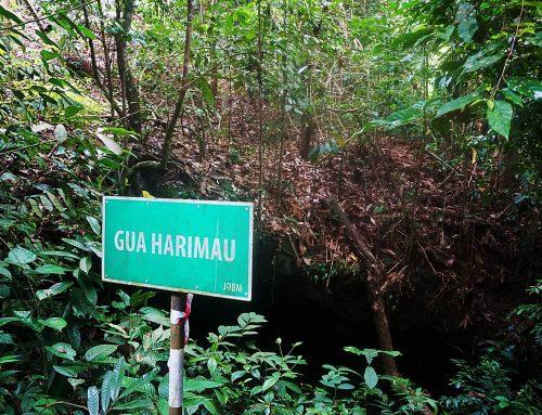 Explore Undiscovered Caves of Brunei