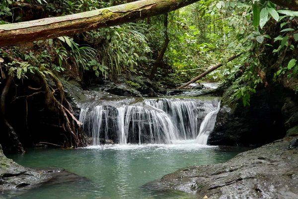 Mutong Waterfalls and Resident Doctor Fish