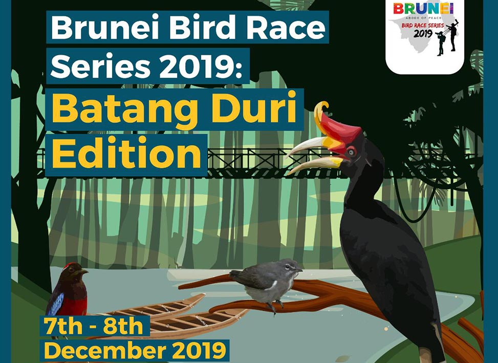 Bird Race Dec 7 to 8