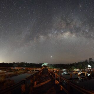 Tucked away in Belait is one of Brunei's hidden gems – Luagan Lalak Recreation Park. Famed for its no light pollution surroundings, it is the favourite spot for Milky Way spotters on a clear night. During the day, you can surround yourself with a unique ecosystem of different kinds of small fishes, birds & insects, and a picturesque scene with the three gazebos built with wooden walkways across, suitable for picnics and photoshoots.  #discoverbrunei #travelgram #instatravel #travelasia #travelinspiration #travelphotography #travel #wanderlust #destinationearth #seetheworld #brunei